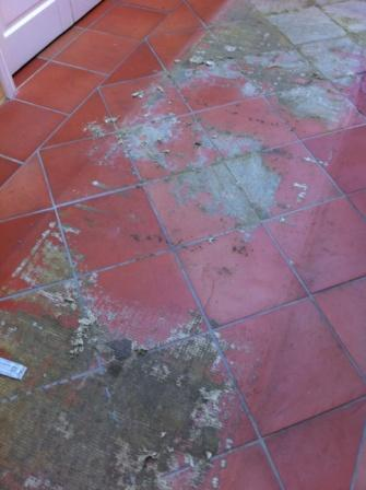 teracotta tile befor cleaning